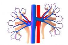 足の血管が浮き出る 病気